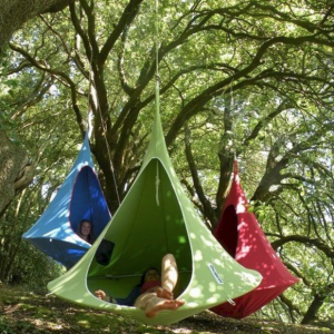 Hammocks hanging from trees