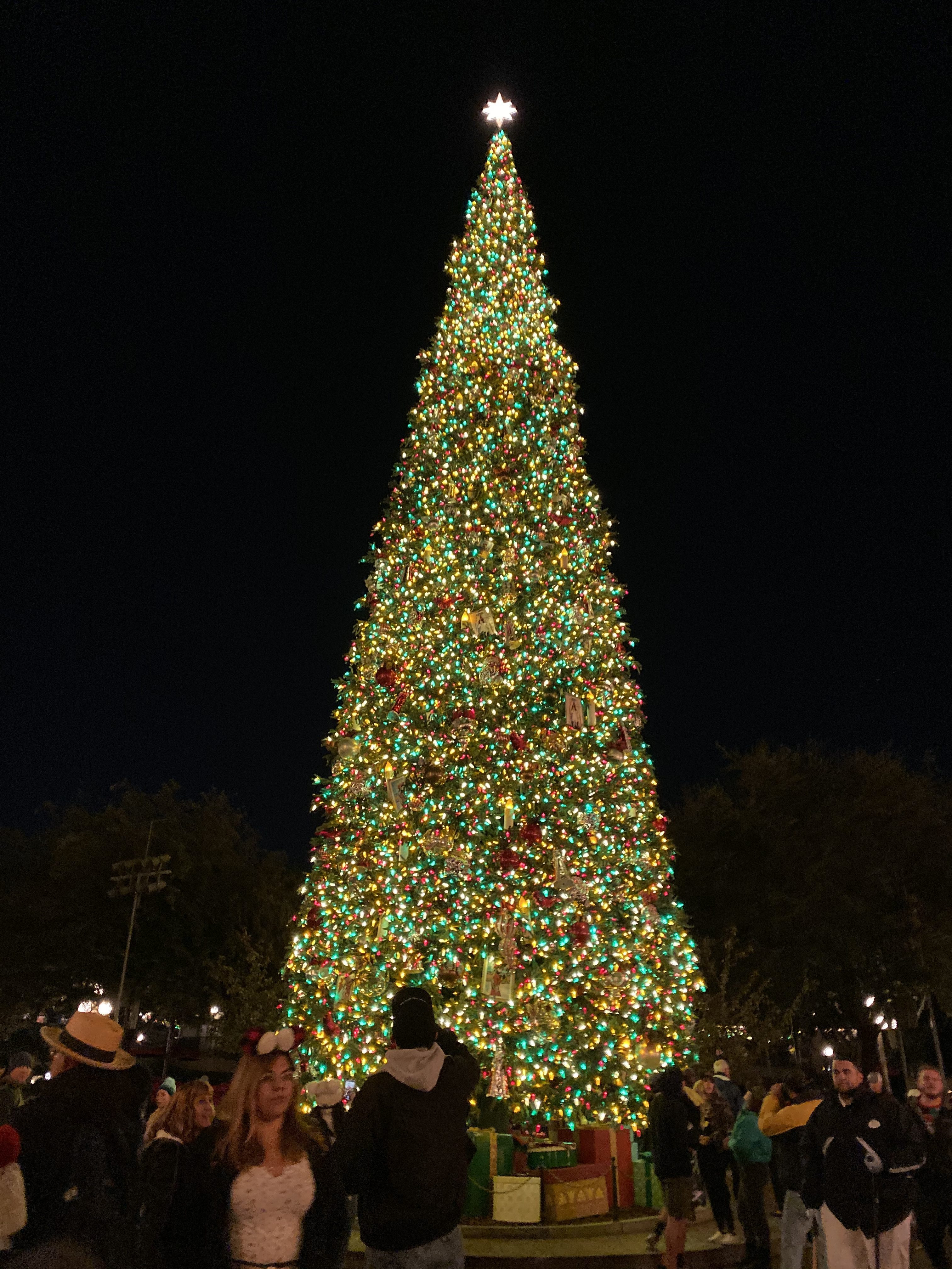 A lit up Christmas tree in Disneyland